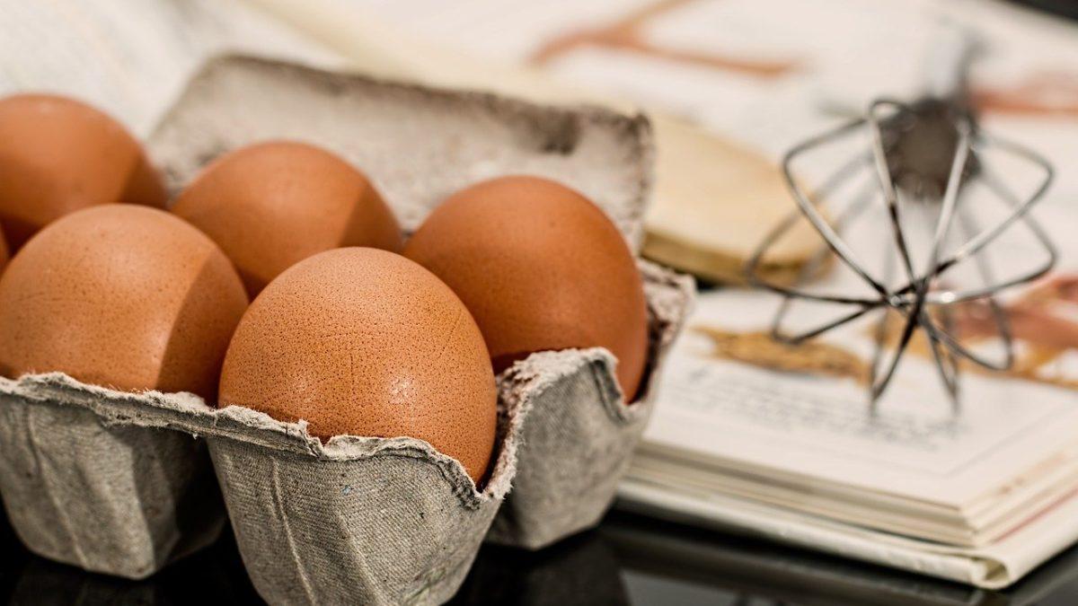 Por que o ovo é um ótimo alimento para emagrecer