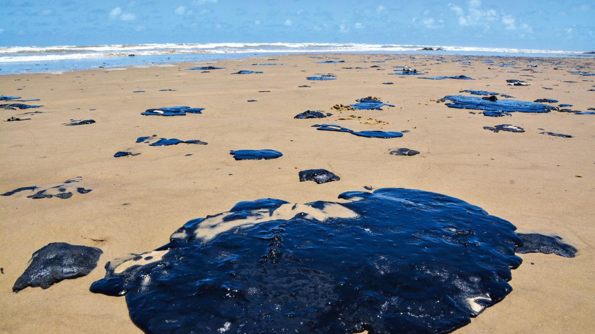 Saiba detalhes sobre as manchas de óleo nas praias do Nordeste!